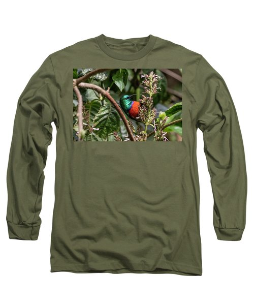 Northern Double-collared Sunbird Long Sleeve T-Shirt