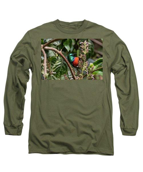 Northern Double-collared Sunbird Long Sleeve T-Shirt