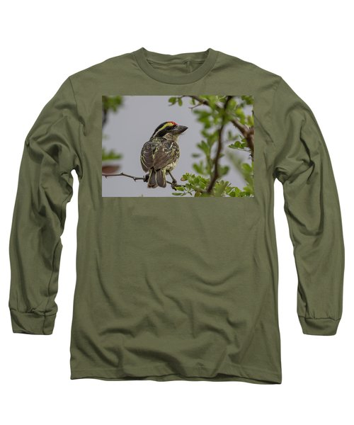 Red-fronted Barbet Long Sleeve T-Shirt