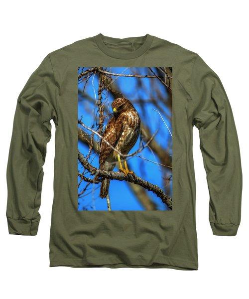 Red Shouldered Hawk Long Sleeve T-Shirt