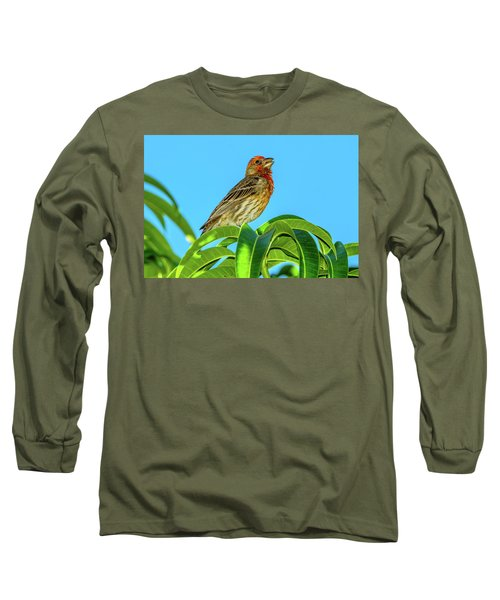 Singing House Finch Long Sleeve T-Shirt
