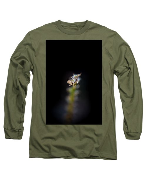 Somewhere In The Garden Long Sleeve T-Shirt