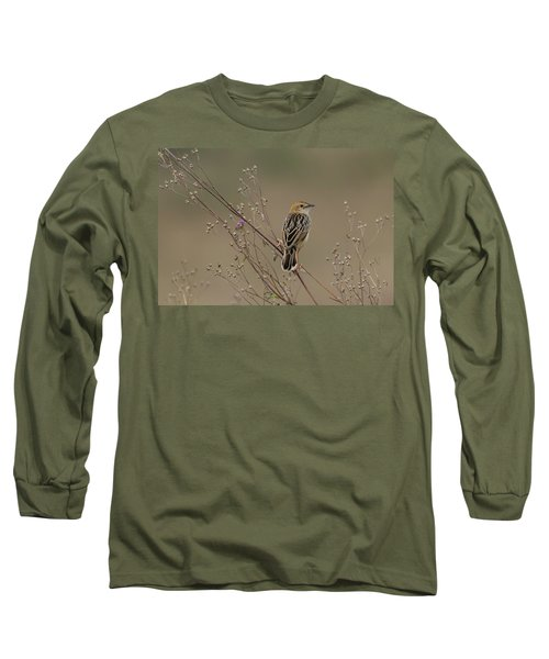 Stout Cisticola Long Sleeve T-Shirt