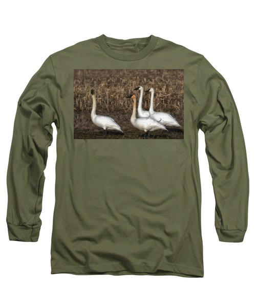 Swans Long Sleeve T-Shirt