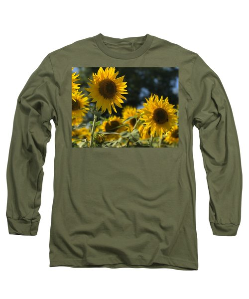 Sweet Sunflowers Long Sleeve T-Shirt