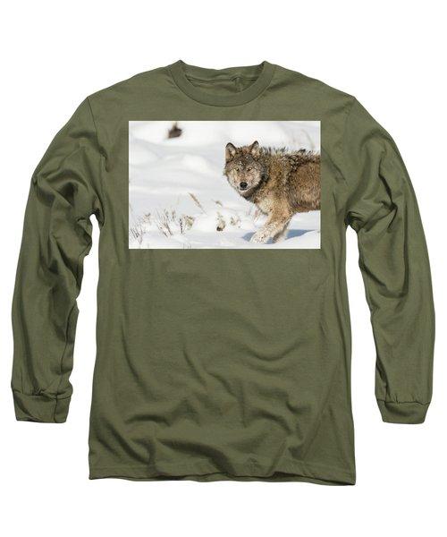 W35 Long Sleeve T-Shirt