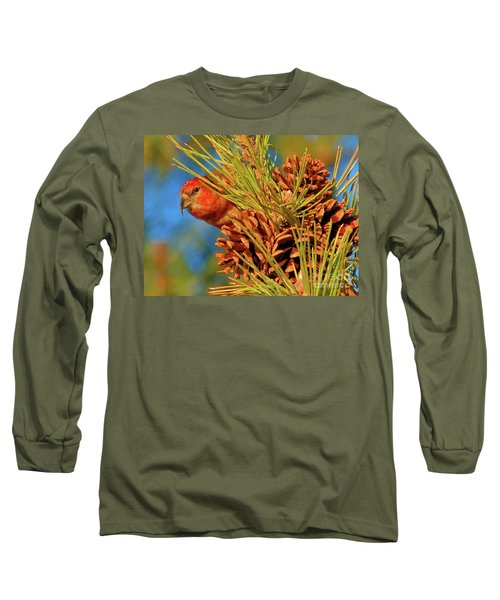 White-winged Crossbill Long Sleeve T-Shirt
