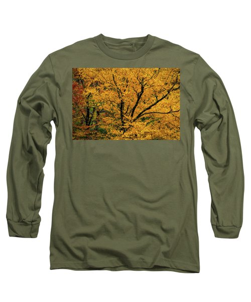 Yellow Tree Leaf Brilliance  Long Sleeve T-Shirt