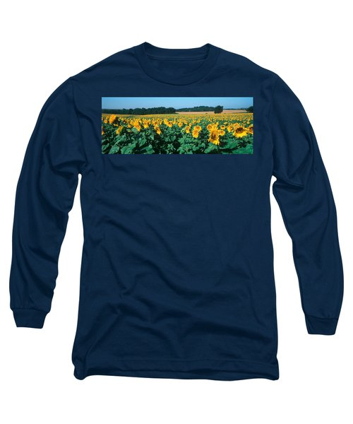 Sunflowers In A Field Long Sleeve T-Shirt