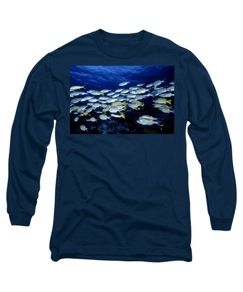 Bluelined Snappers And Yellowspot Emperors Long Sleeve T-Shirt