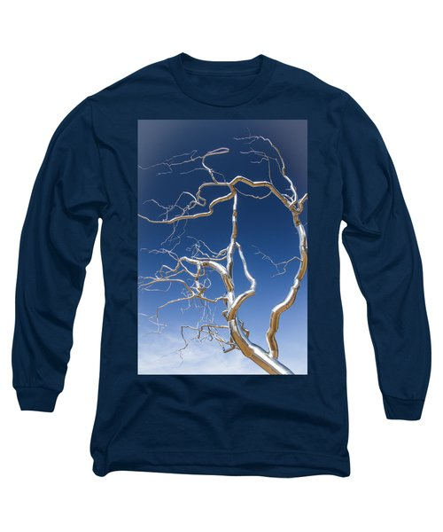 Branches Of Silver Long Sleeve T-Shirt by Steven Bateson