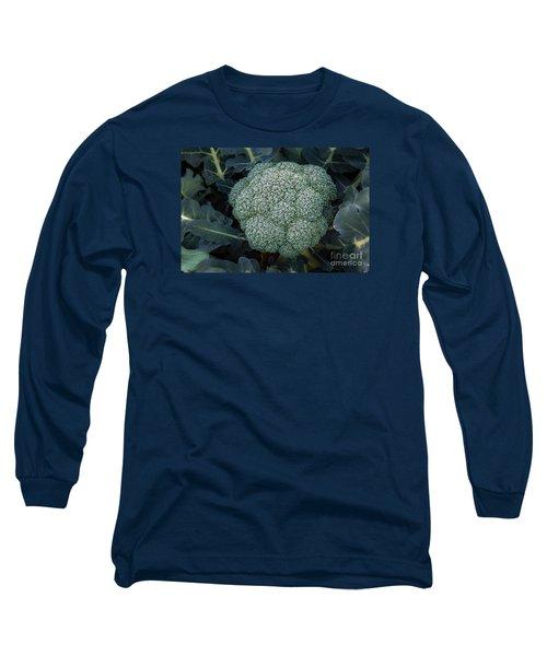 Broccoli Long Sleeve T-Shirt by Robert Bales