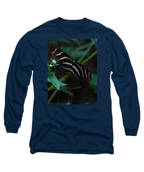 Butterfly Art 2 Long Sleeve T-Shirt
