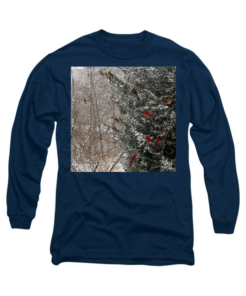 Cardinals In Winter 1 Square Long Sleeve T-Shirt