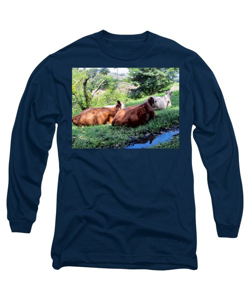 Long Sleeve T-Shirt featuring the photograph Cow 6 by Dawn Eshelman