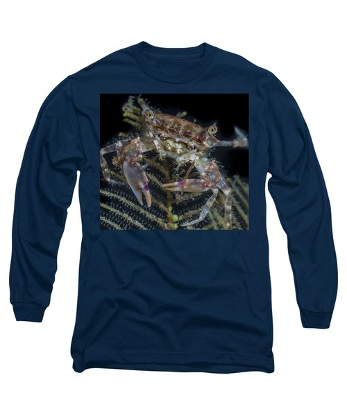 Crab Staring At You Long Sleeve T-Shirt