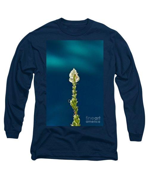 Faith Is Peace Long Sleeve T-Shirt