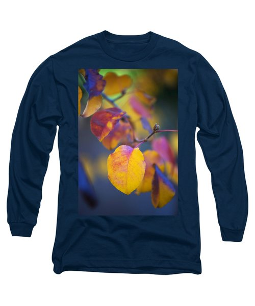 Long Sleeve T-Shirt featuring the photograph Fall Color by Stephen Anderson
