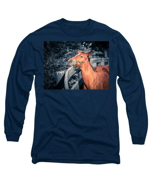 Foal By The Fence Long Sleeve T-Shirt
