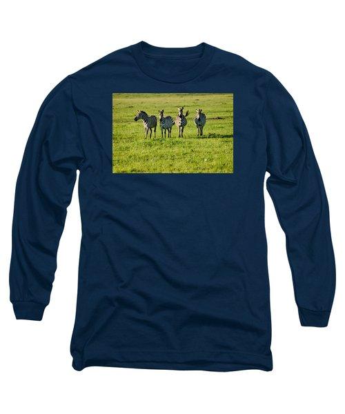 Four Zebras Long Sleeve T-Shirt by Menachem Ganon