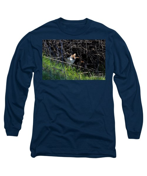 Frightened Feral Calico  Long Sleeve T-Shirt