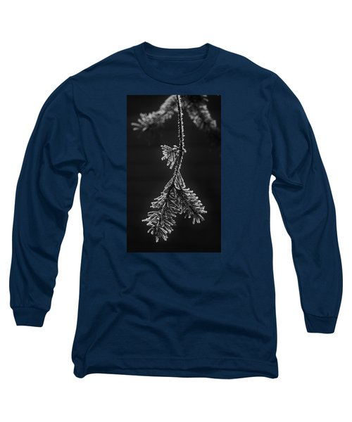 Frosted Pine Branch Long Sleeve T-Shirt