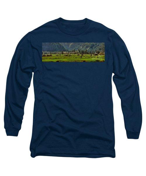 Long Sleeve T-Shirt featuring the photograph Garden Valley Elk Herd by Sam Rosen