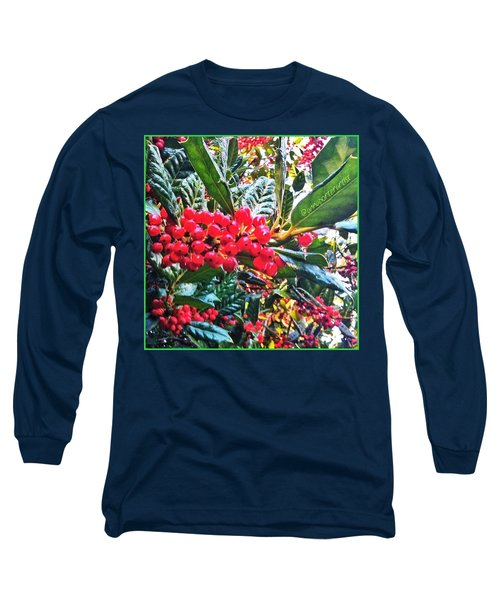 Holly Berries In The Sun Long Sleeve T-Shirt