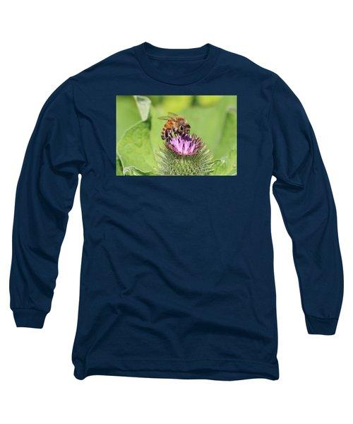 Honeybee On Burdock Long Sleeve T-Shirt by Lucinda VanVleck