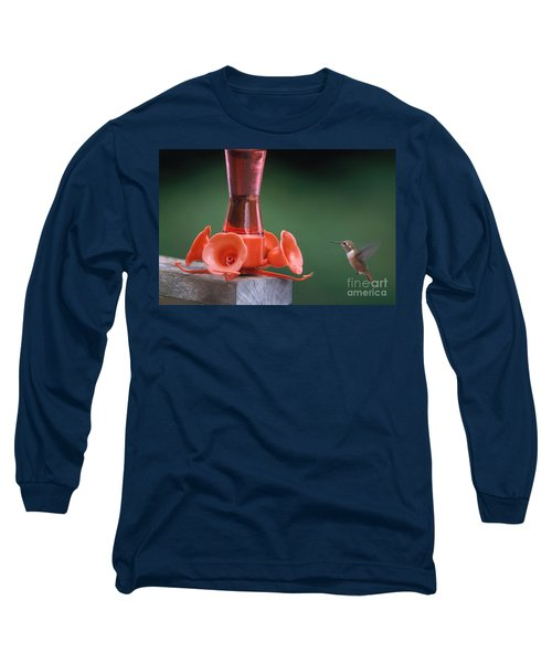 Hummingbird Approaching Feeder Long Sleeve T-Shirt