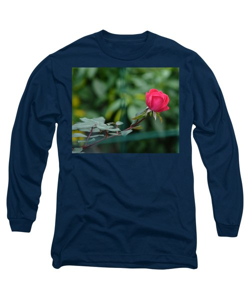 Long Sleeve T-Shirt featuring the photograph Red Rose I by Lisa Phillips