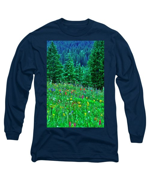 Shrine Pass Wildflowers Long Sleeve T-Shirt by Jeremy Rhoades