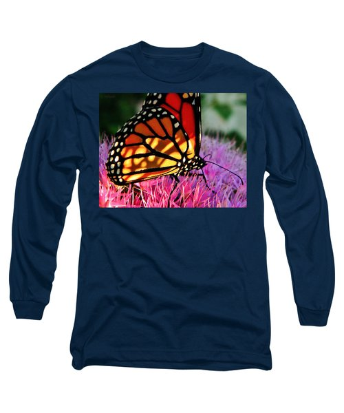Stained Glass Monarch  Long Sleeve T-Shirt by Chris Berry