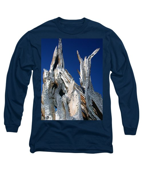 Steeple Roots Long Sleeve T-Shirt