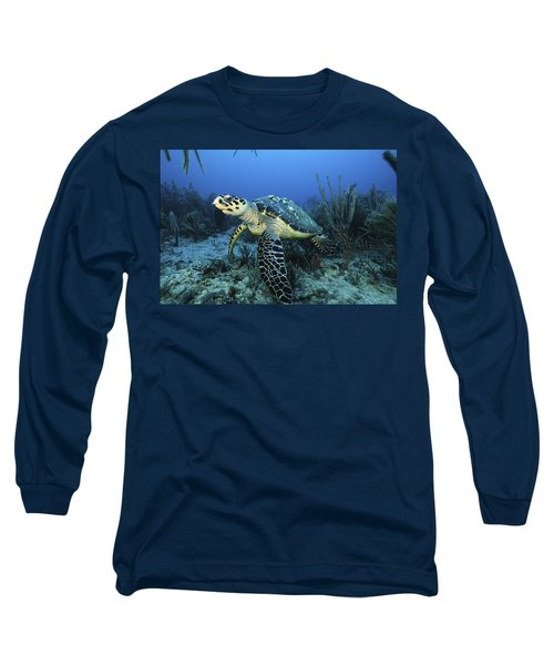 The Beauty Hawksbill Long Sleeve T-Shirt
