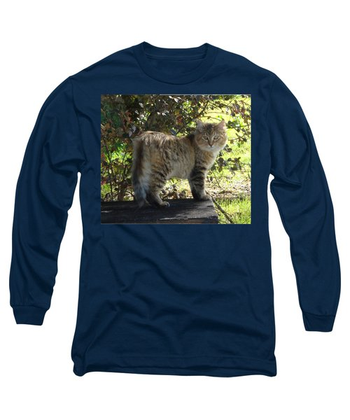 Timber The Kitten Long Sleeve T-Shirt