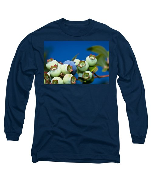 Blueberries And Sky Long Sleeve T-Shirt
