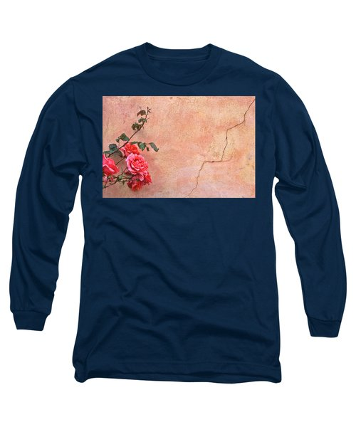 Cracked Wall And Rose Long Sleeve T-Shirt
