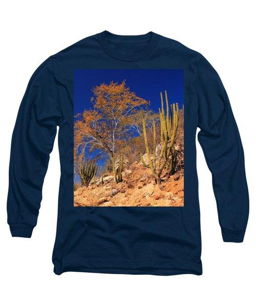 Desert Colors Long Sleeve T-Shirt