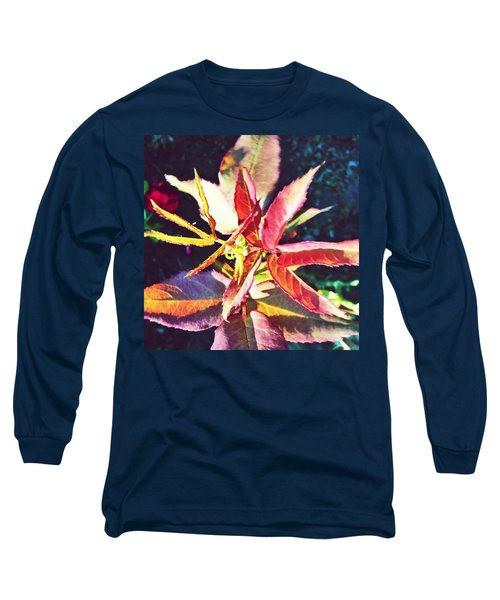 Rosy Glow - Rose Leaves Afternoon Light Long Sleeve T-Shirt