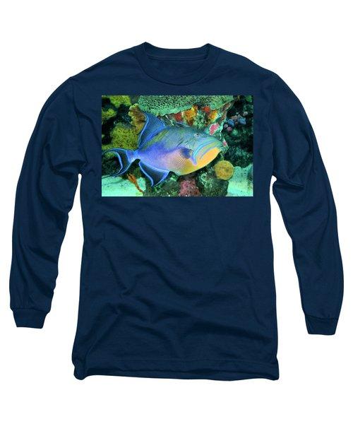 Queen Triggerfish Long Sleeve T-Shirt