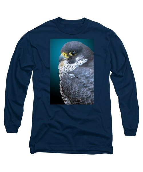 Peregrine Falcon Long Sleeve T-Shirt by Brian Stevens