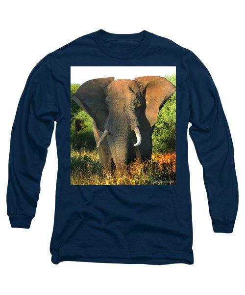 African Bull Elephant Long Sleeve T-Shirt