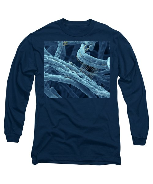 Anthrax Bacteria Sem Long Sleeve T-Shirt