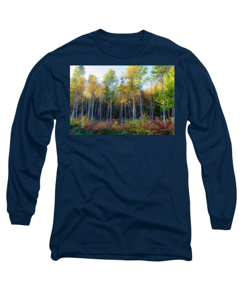Birch Trees Turn To Gold Long Sleeve T-Shirt