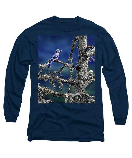 Blue Jay Mountain Long Sleeve T-Shirt