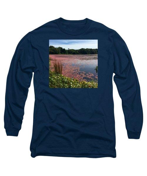 Cape Cod Cranberry Bog Long Sleeve T-Shirt by Beth Saffer
