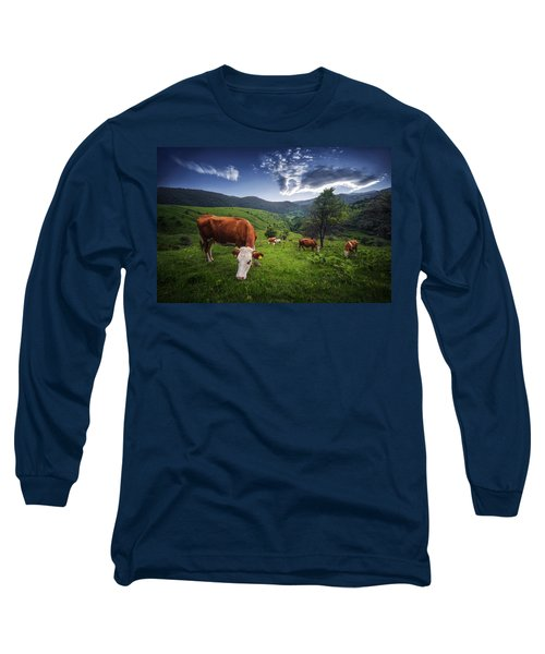 Cows Long Sleeve T-Shirt by Bess Hamiti