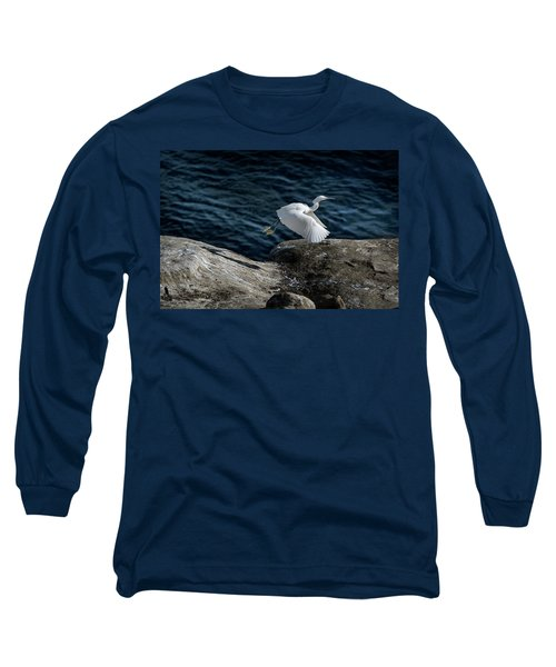 Egret Long Sleeve T-Shirt by James David Phenicie