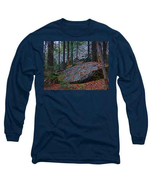 Long Sleeve T-Shirt featuring the photograph Forest Trail 01 2015 by Walter Fahmy